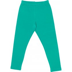 Opal green thick leggings