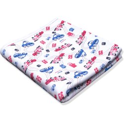 Double layer blanket with cars printed pattern