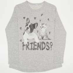 Gray long sleeve t-shirt with friends print
