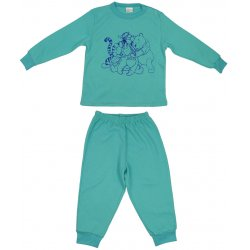 Aqua long-sleeve thick pajamas with animals print