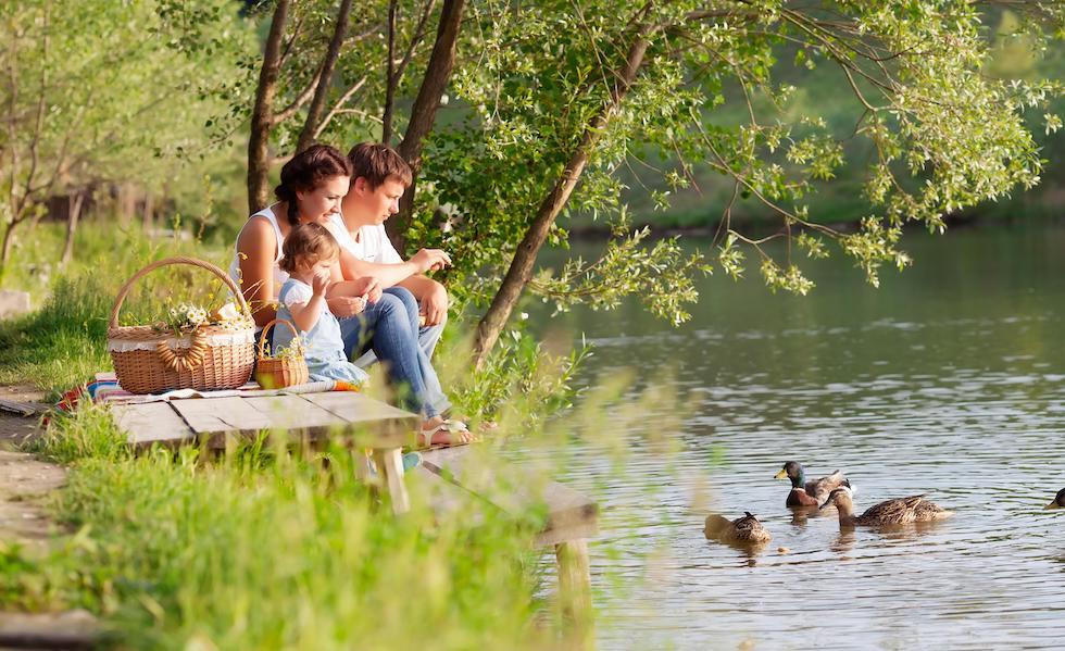 Familie iese la picnic primavara